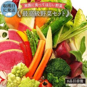 【ふるさと納税】【最高に贅沢な野菜】こだわり栽培[最高級野菜]セット!農薬・化学肥料不使用 [AGE014]