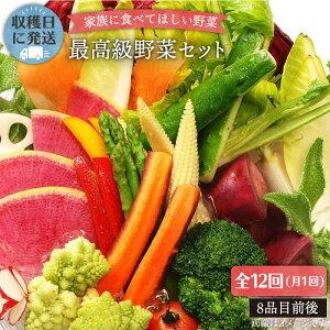 【ふるさと納税】【全12回】【最高に贅沢な野菜】☆畑直送☆こだわり有機栽培[最高級野菜]セット [AGE018]