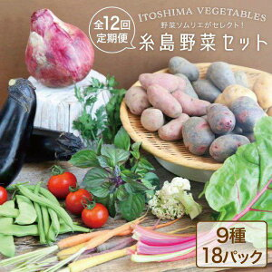 【ふるさと納税】旬を味わう『糸島野菜セット』年12回お届けコース 野菜ソムリエ松永 AJB003