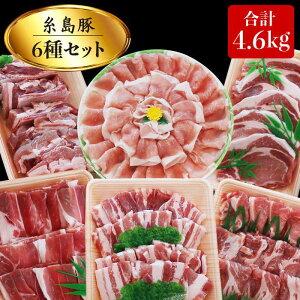 【ふるさと納税】合計4.6kg!糸島豚食べ尽くしセット(とんかつ、肩ロース、しゃぶしゃぶ、豚バラ、スペアリブ、小間切れ) トラヤミートセンター AJD005