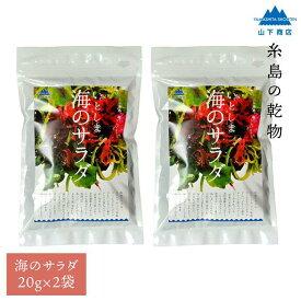 【ふるさと納税】糸島の乾物 海藻 いとしま 海のサラダ 2袋【山下商店】 MDL ANA012