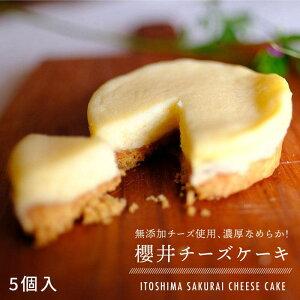 【ふるさと納税】無添加チーズの櫻井チーズケーキ【5個入り】糸島手作り工房 爽風 ATA002