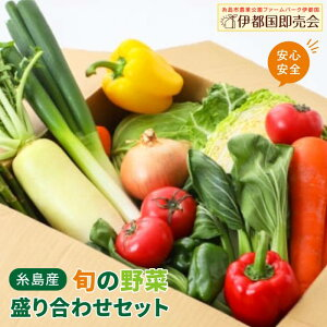 【ふるさと納税】福岡県糸島産 旬の野菜盛り合わせセット [AWC006]