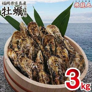 【ふるさと納税】福岡県糸島産 殻付き生食用福吉の牡蠣3kg 飛龍丸 AZB002-2