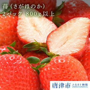 【ふるさと納税】 苺(さがほのか)2パック 800g以上