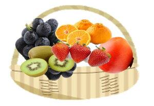 【ふるさと納税】季節のフルーツ(くだもの)定期便12カ月(BC037)