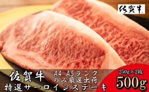 【ふるさと納税】【数量限定】佐賀牛サーロインステーキ 合計500g(250g×2P)(DY048)