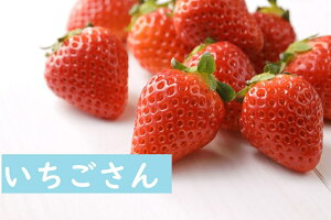 【ふるさと納税】いちご祭り♪いちごさんドーン!と1.2キロお得!!!(EK008)