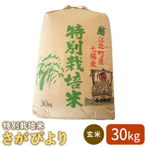 【ふるさと納税】【安心・安全な佐賀の米】特別栽培米「さがびより」玄米30kg【だいちの家】 [HAG007]