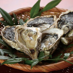 【ふるさと納税】九十九島岩がき 岩牡蠣 岩ガキ いわがき かき 旬