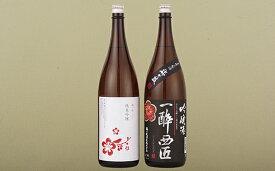 【ふるさと納税】香り豊かな純米吟醸・吟醸酒のプチ贅沢一升瓶2本