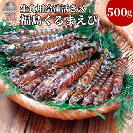 【ふるさと納税】生食用冷凍活き〆福島くるまえび500g【B0-053】