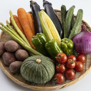 【ふるさと納税】【A7-003】季節の野菜詰め合わせ