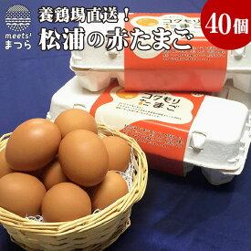【ふるさと納税】養鶏場直送!松浦の赤たまご(40個)【A7-027】