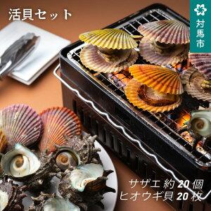 【ふるさと納税】A2-097 活貝セット