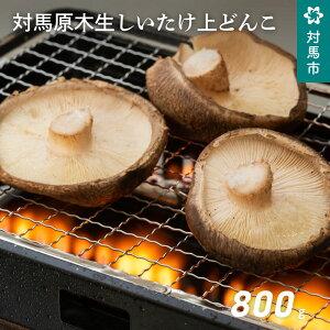 【ふるさと納税】A-182 対馬原木生しいたけ上どんこ(A品ギフト規格)800g