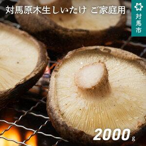 【ふるさと納税】A-184 対馬原木生しいたけ ご家庭用(不揃い規格)たっぷり 2000g