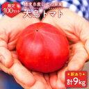 【ふるさと納税】【限定100セット】『訳あり』大島トマト 計9kg(3kg×3回定期便)<大島造船所農産G> [CCK008]