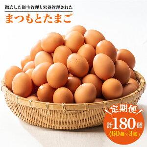 【ふるさと納税】※3回定期便※【くさみゼロ!コクある卵】徹底した衛生管理と栄養管理された「まつもとたまご」Lサイズ60個入り<松本養鶏場>CCD006