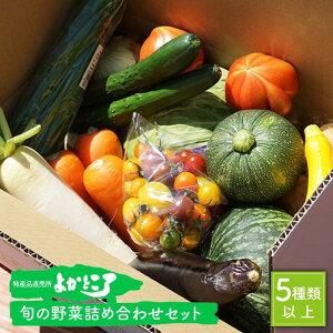 【ふるさと納税】旬の野菜の詰め合わせ(5種以上)<よかところ> [CBO003]