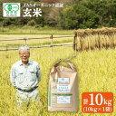 【ふるさと納税】【玄米10kg】JASオーガニック認証のお米<ハマソウファーム> [CBR008]