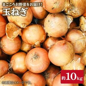 【ふるさと納税】【まごころ野菜】玉ねぎ約10kg<西彼とれたて処>[CBV006]