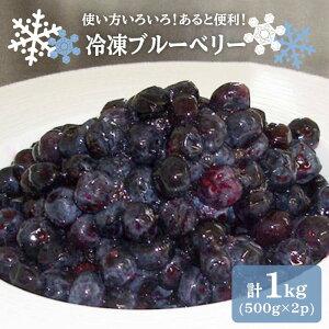 【ふるさと納税】【紫色の宝石】冷凍ブルーベリー 計1kg(500g×2袋)<観光いちご狩り農園 いちごの森> [CCB005]