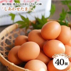 【ふるさと納税】【#ノンストレス卵】平飼い「しあわせたまご」40個<松本養鶏場>[CCD021]