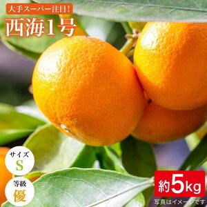 【ふるさと納税】【優品5kg/Sサイズ】西海1号(山本早生/温州みかん)<西海柑橘農業協同組合> [CCF004]
