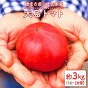 【ふるさと納税】【糖度8度以上】大島トマト3kg<大島造船所農産G> [CCK005]