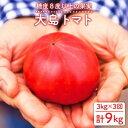 【ふるさと納税】【糖度8度以上】大島トマト 計9kg(3kg×3回定期便)<大島造船所農産G> [CCK006]