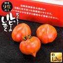 【ふるさと納税】【限定100箱】糖度9度以上!究極のトマト「ルビーのしずく」約1.2kg<大島造船所農産G> [CCK016]