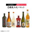 【ふるさと納税】【6種飲み比べ】大島味自慢<大島酒造> [CCP011]