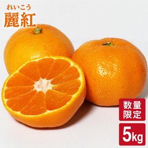 【ふるさと納税】【限定20箱】麗紅(れいこう)5kg<原口果樹園>[CCW003]