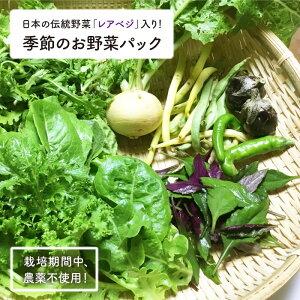 【ふるさと納税】BAH001 【無農薬!】おいしい!季節のお野菜パック【ハイホー♪ファーム】