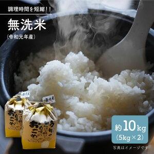 【ふるさと納税】【令和元年産】無洗米10kg【彼杵の荘】 [BAU057]