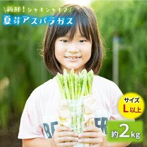 【ふるさと納税】【とれたて新鮮♪】夏芽アスパラガス2kg(Lサイズ以上)【はゆっちFarm】[BBW020]