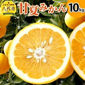 【ふるさと納税】甘夏みかん 10kg 熊本県産 甘夏 柑橘 みかん 蜜柑 フルーツ 果物 くだもの 旬 国産 九州 送料無料