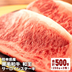 【ふるさと納税】熊本県産 黒毛和牛 和王 サーロインステーキ 500g (250g×2枚) 和牛 肉 牛肉 牛 お肉 サーロイン ステーキ A4 A5 冷凍 国産 送料無料