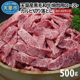 【ふるさと納税】黒毛和牛 焼肉 カルビ ロース 切り落とし 500g A4 〜 A5 天草産
