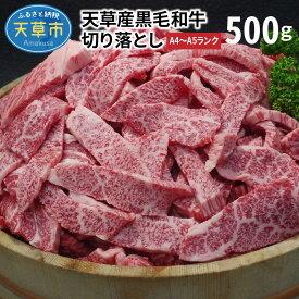 【ふるさと納税】天草産黒毛和牛 焼肉用ロース・カルビ切り落とし 500g