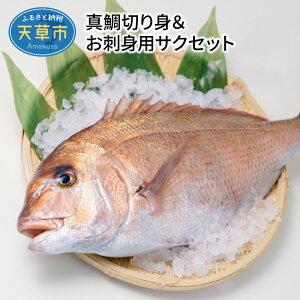 【ふるさと納税】真鯛切り身&お刺身用サクセット