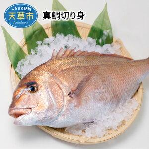 【ふるさと納税】真鯛切り身【8P】