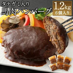 【ふるさと納税】タテガミ入り馬肉ハンバーグ 6個セット 合計約1.2kg 200g×6個 デミグラスソース ハンバーグ 馬肉 惣菜 おかず 真空パック 冷凍 送料無料