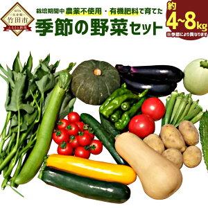 【ふるさと納税】栽培期間中農薬不使用・有機肥料で育てた、季節の野菜セット 約4〜8kg 野菜 無農薬 有機肥料 有機野菜 旬 九州産 国産 送料無料