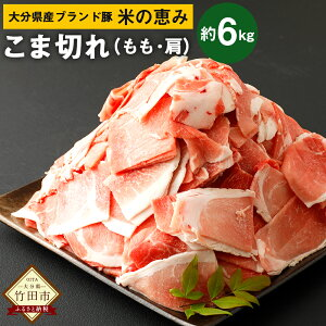 【ふるさと納税】大分県産 ブランド豚 米の恵み こま切れ 約6kg 約250g×24袋 小分け 肩切り落とし(もも・肩) 豚肉 お肉 グルメ お取り寄せ 冷凍 国産 送料無料