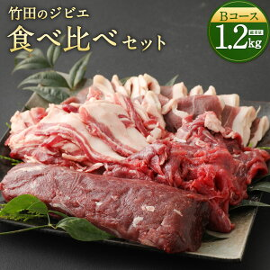 【ふるさと納税】竹田のジビエ 食べ比べ 猪肉 鹿肉 4種 セット Bコース 合計1.2kg レシピ付き イノシシ シカ 4種類 ジビエ お肉 ロース 肩・モモ しゃぶしゃぶ肉 ブロック 冷凍 精肉 食品 セッ