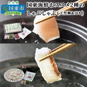 【ふるさと納税】国東海鮮おススメ2種のしゃぶしゃぶ(天然鯛&はも)・通