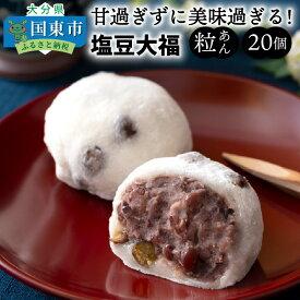 【ふるさと納税】甘過ぎずに美味過ぎる!食べ始めると止まらない塩豆大福(20個)・通