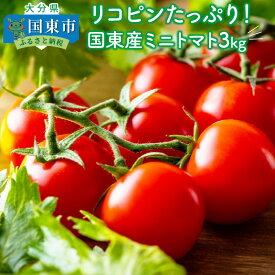 【ふるさと納税】リコピンたっぷり!国東産ミニトマト3kg